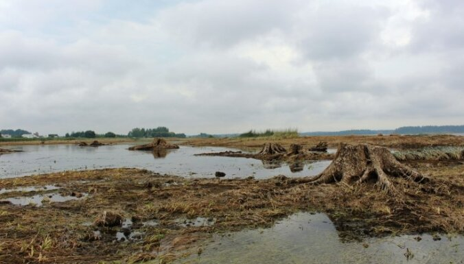 ФОТО: До острова Св.Мейнарда на Даугаве теперь можно дойти пешком. И вот зачем