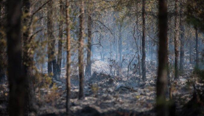 Белорусский вертолет уже вылетел в Латвию для участия в тушении пожара в Валдгалской волости