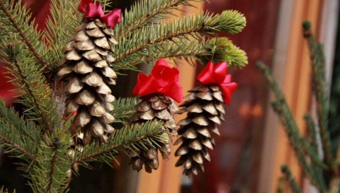 Svētdiena būs viena no siltākajām ziemas dienām Latvijas vēsturē