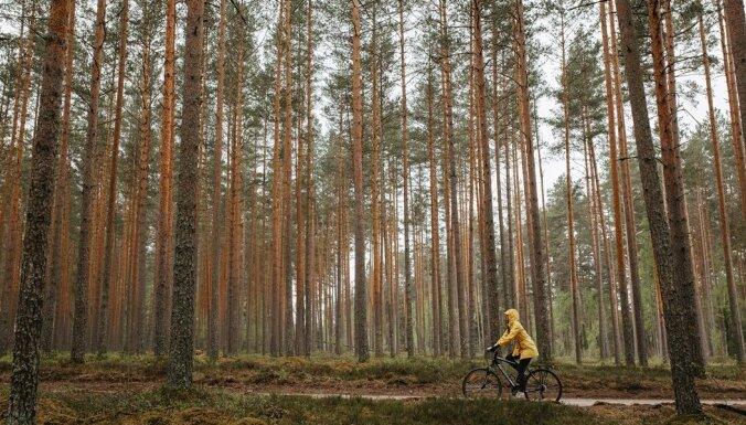 Izveidots 25 kilometru garš velomaršruts Valmieras pusē