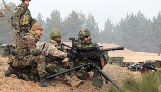 Производитель бекона из Добеле призвал армию Латвии начать отстрел кабанов