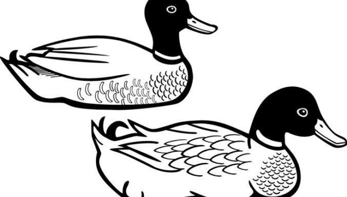 Melnbalti zīmējumi jaundzimušo attīstībai no Montessori pedagoģijas metožu krātuvēm