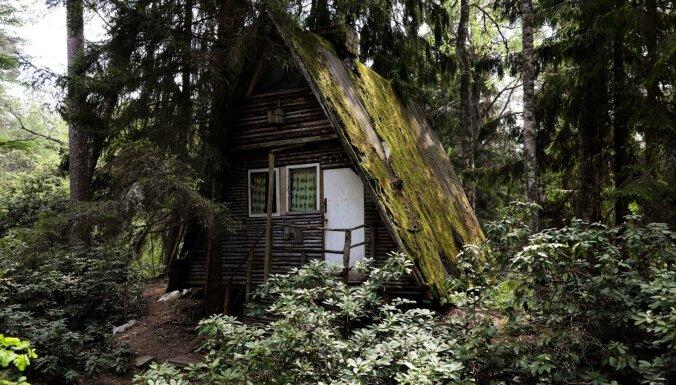 Bagātīgas augu pasaules iepazīšana: skaisti dendroloģiskie parki Latvijā