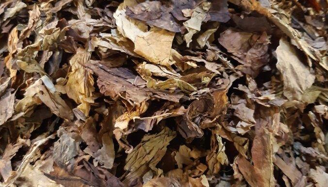 VID предотвратил контрабанду 13,5 тонны табачных листьев