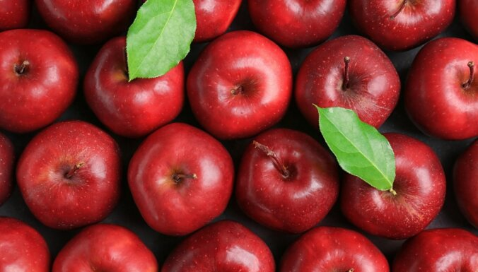 Через границу не пропустили 18 тонн сербских яблок