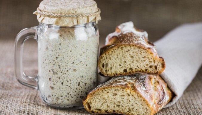 Soli pa solim: kā mājās pagatavot maizes ieraugu