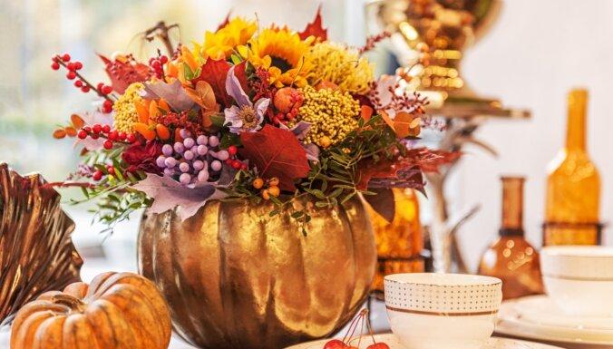 Ķirbju skeptiķiem – jaunas garšas un galda dekorēšana ar rudens ogu zeltā
