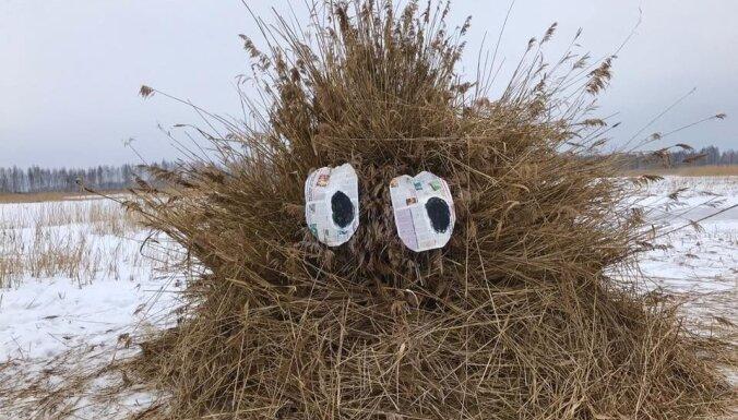 Niedru skulptūru festivāls pārcelts uz Randu pļavām