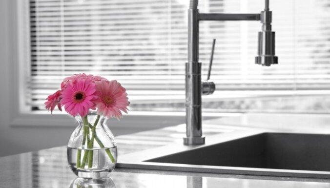 Virtuves izlietnes meklējumos: kā iegādāties piemērotāko