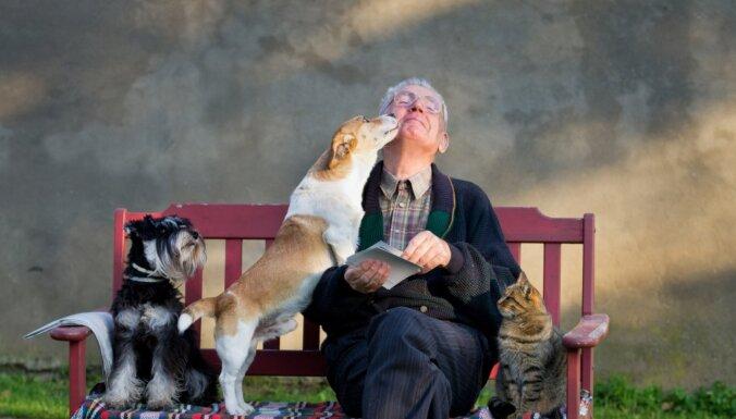 Suns senioram: kādu šķirni izvēlēties, ar ko rēķināties un kas jāpārdomā pirms iegādes
