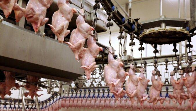 Putnu fabrika 'Ķekava' plāno ieguldīt 158 000 eiro dezinfekcijas barjerās