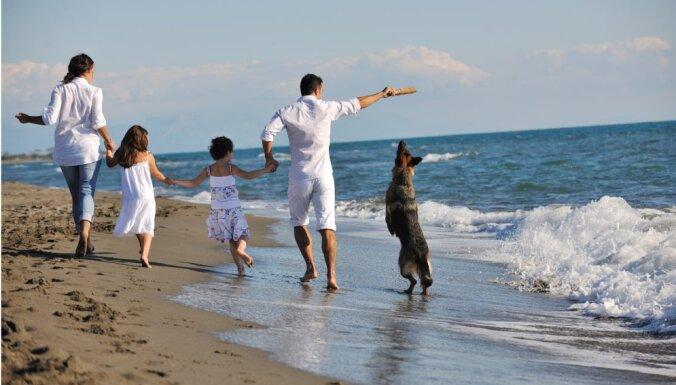 Начат сбор подписей за возможности выгуливать собак на юрмальских пляжах