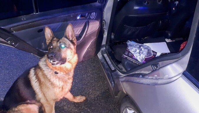 Policijas suns Darvins Madonā palīdz aizturēt vīrieti ar narkotikām