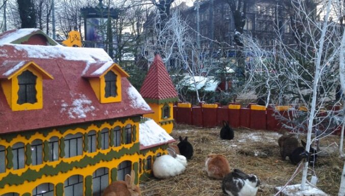 Esplanādē Ziemassvētku laikā aplūkojama Trušu karaliste
