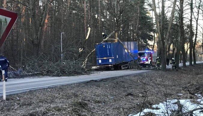 ЧП на ул. Слокас: дерево упало на грузовик и перегородило дорогу