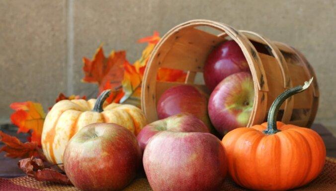 Ar bezmaksas augļiem un dārzeņiem skolēni varēs sākt mieloties novembrī