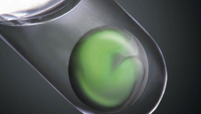 Ученые вырастили в лаборатории двухнедельный человеческий эмбрион