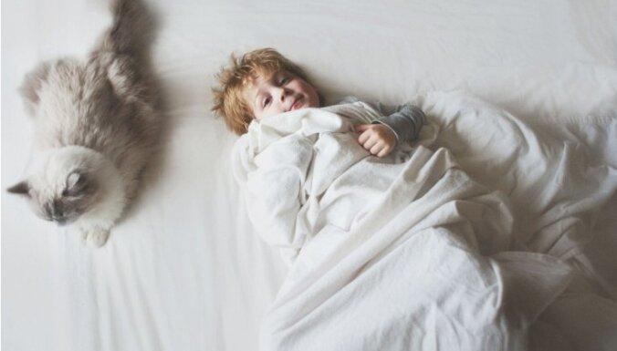 Foto: Cilvēkbērnu un kaķu skaistā draudzība