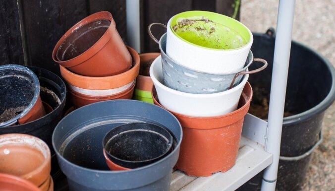 Nacionālais botāniskais dārzs aicina nest nevajadzīgos puķu podus