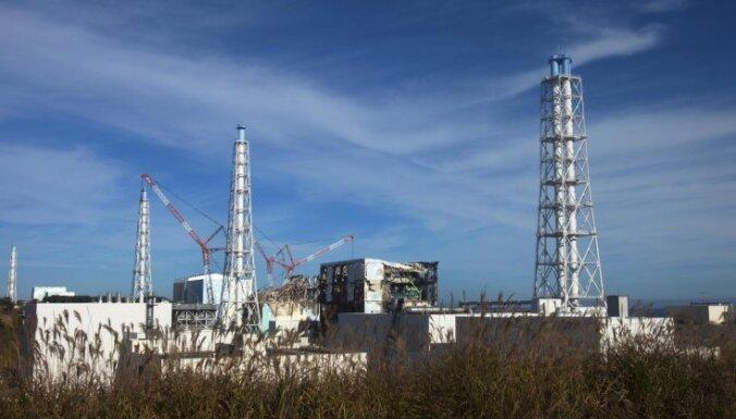 """Морская рыба вблизи АЭС """"Фукусима-1"""" напичкана радиацией: уровень цезия превысил норму в 258 раз"""