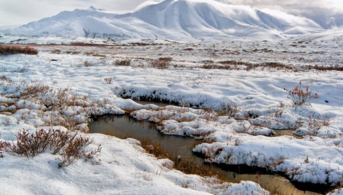 Самый богатый гражданин Чехии Петр Келлнер погиб в авиакатастрофе на Аляске