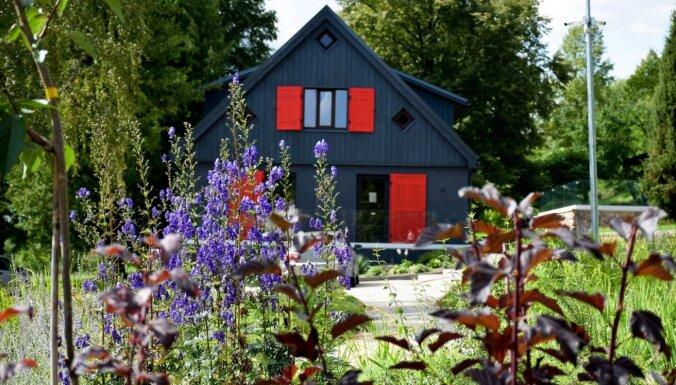 Brīvdienu mājas 'Plosti' – tuvāk dabai ar skatu uz Abavas senleju