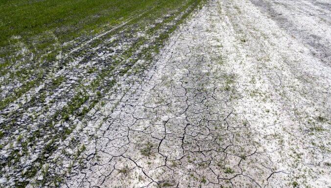 Sausuma dēļ cietušie lauksaimnieki varēs atlikt nodokļu nomaksu