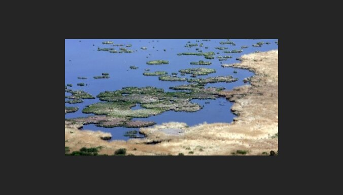 Берег Лиелупе загрязнен нефтепродуктами
