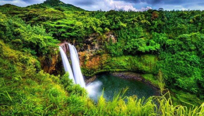Две недели на воде из ручья и ягодах. На Гавайях нашли пропавшую туристку
