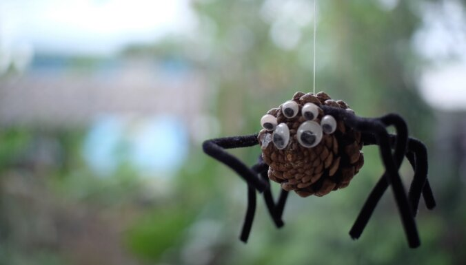 Ņem talkā dabas veltes! Piecas rudenīgas idejas bērnu radošajiem darbiņiem