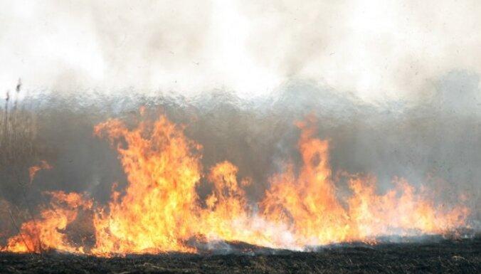 Liesmās Koknesē viens bojāgājušais; brīvdienās dzēsti 68 kūlas ugunsgrēki