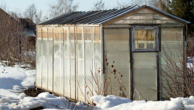 Вендетта по-латгальски. Почему налог на дачи и огороды пенсионеров вырос в 7,5 раз?