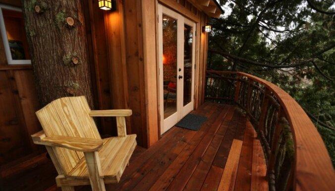 Profesionāļa padomi, kā labāk uzbūvēt māju kokos