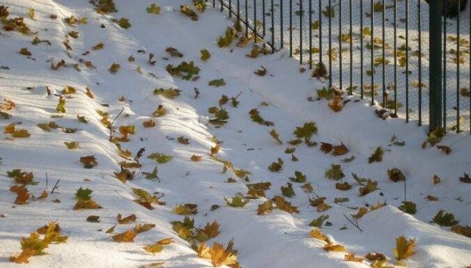 Синоптики: на следующей неделе пойдет снег