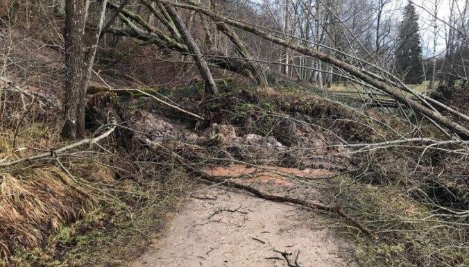 Foto: Pamatīga zemes noslīdējuma dēļ slēgta pastaigu taka pie Gūtmaņalas