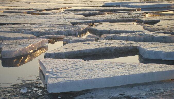Ugunsdzēsēji Rīgā izglābj uz ledus gabala peldošu suni