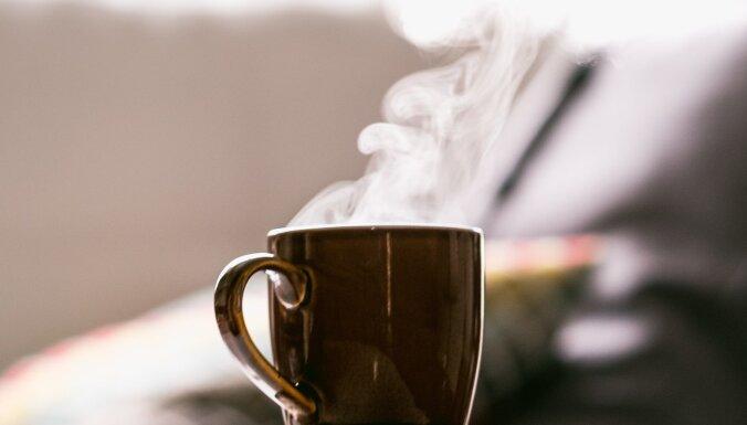 Kafejnīcas kvalitāte savās mājās: kas jāzina, izvēloties kafijas automātu