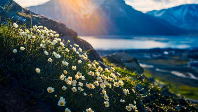 ФОТО. Шпицберген — самое северное поселение Норвегии
