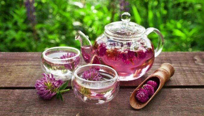 Ieteicamās un aizliegtās tējas grūtniecēm