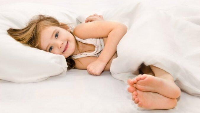 Пять советов о том, как выбрать правильное одеяло