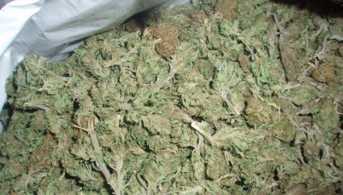 Aiztur vīrieti ar 'aizdomīgiem iepakojumiem', kuri pilni marihuānas