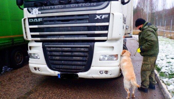 ФОТО. Служебный лабрадор помог найти контрабандный товар