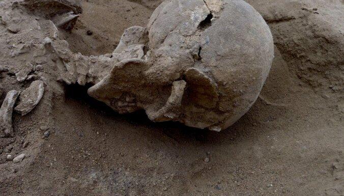 Раскрыта тайна захоронения братской могилы 15 человек бронзового века