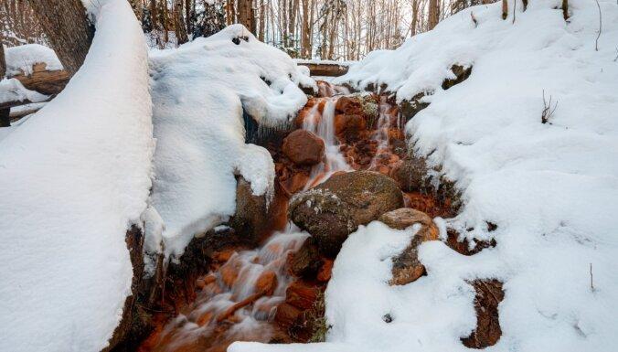 Foto: Krāšņie Dāvida avoti, kas vareni skaisti arī ziemā