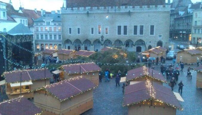 В Таллинне упала главная рождественская елка
