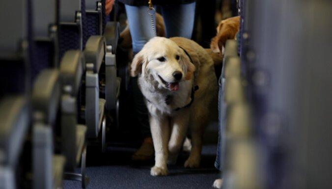 Dānijas aviokompānijai var nākties maksāt kompensāciju sunim par atceltu avioreisu