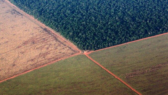 Ekologs brīdina: nākamās pandēmijas perēklis varētu būt Amazonē