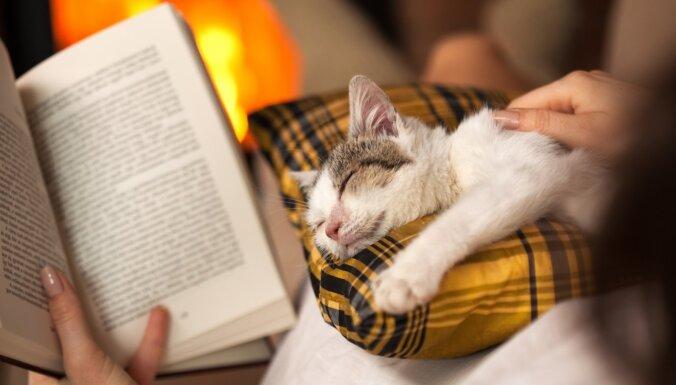 Kādas grāmatas izlasīt svētku laikā? Grāmatu blogeru ieteikumi