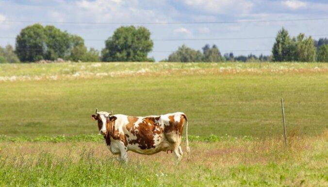 Par lauksaimniecības zemes neizmantošanu lauksaimnieciskajā darbībā būs jāmaksā sodanaudas