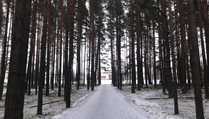 ФОТО. Пешком к морю: прогулка по двухкилометровому променаду в Царникаве